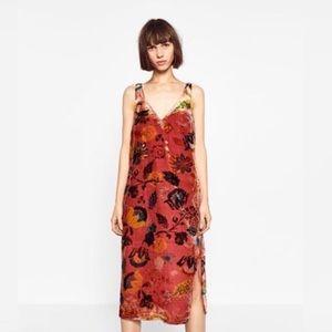 Zara Trafluc Velvet Floral Long Dress